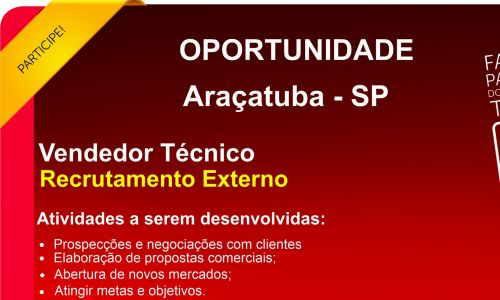 Vendedor Tecnico Araçatuba